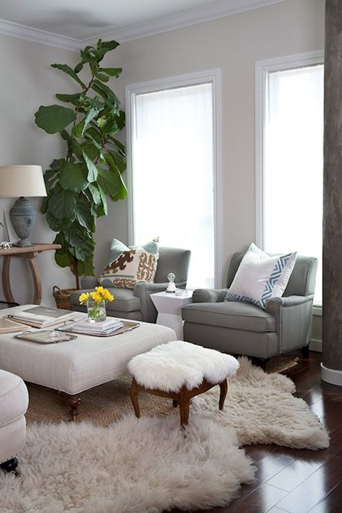 Design Sponge - living rooms - fiddle leaf fig, putty paint, putty walls, gray chairs, flokati rug, linen ottoman, caster legs, suzani pillow, layered rugs, sheepskin rug, scroll pillows, geometric table, white geometric table,