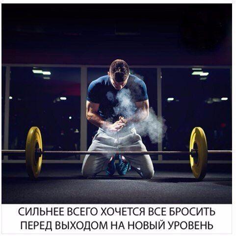 Программа тренировок на массу  / Идея Воркаута