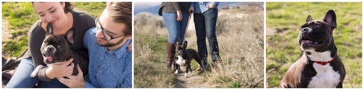 Engagement session with couple and their adorable pup