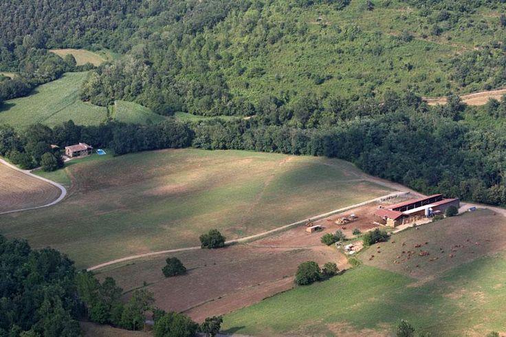 La granja de #vedelles #carn #menú #saludable #ecològic #certificat #CCPAE http://www.ecogarrotxa.com