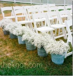 I like the idea of baby's breath to line the isle inside a simple container - maybe have just a few peacock feathers sticking out and ribbon around whatever container is used.... Maybe.