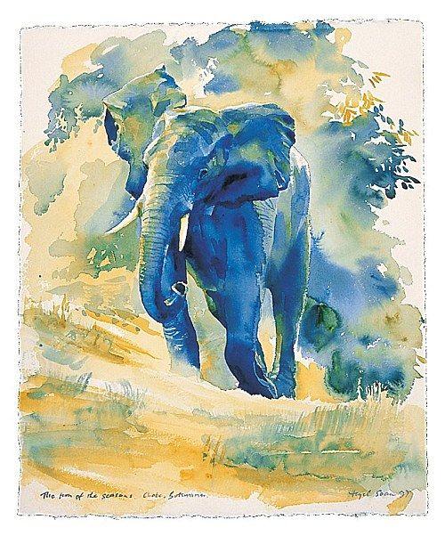 Four Elements Watercolour Artist Tuffytats: Hazel Soan Artist - Bing Images
