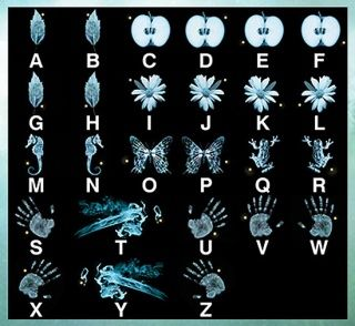 NO WAY!!! Fringe Glyph decoder. Secret message in every episode. I'll have to have this on hand while I go through the series.