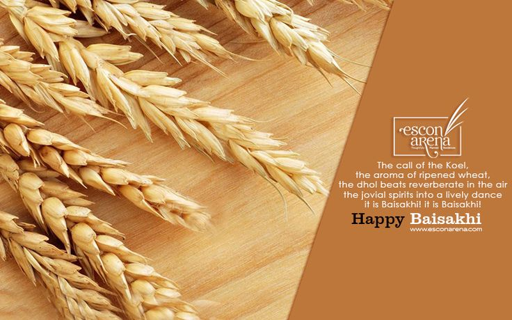 May this harvest season bring endless joy and happy moments in your lives #Happy #Baisakhi.  #EsconArena