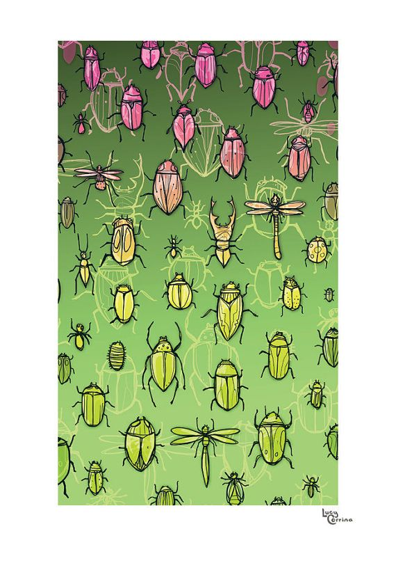 Beetle Bugs Print by lucycorrina on Etsy, $25.00