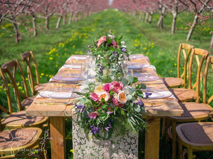 Beautiful detail shot of a gorgeous wooden table for a wedding dinner in a dreamy pink orchard. Beautiful table adorned with flowers @pambocb and decor with gold, white and blush colors. @niunia1977 @WarehouseNOTL  @constellationev  #JoshBellinghamPhotography