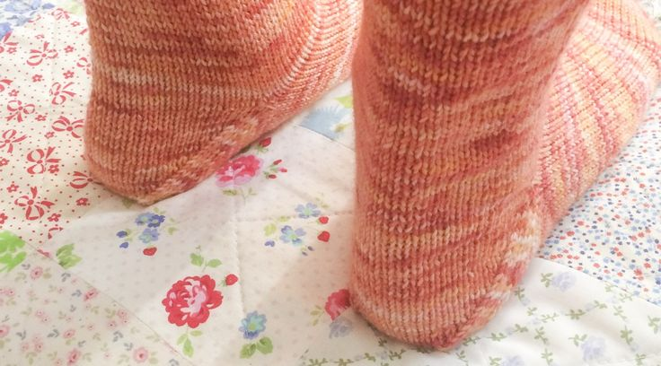 Sock knitting newbie Cole and Taffy