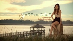 Hart of Dixie- I love Rachel Bilson in this show.