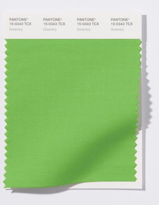 """...Greenery, a color described by the forecasting company asa """"fresh and zesty yellow-green shade that evokes the first days of spring when natures greens"""