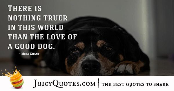 Quotes About Dogs - 2
