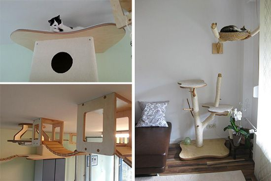 1000 Images About Cat Climbs Via StairsShelvesCubesCircles On Pinterest Towers