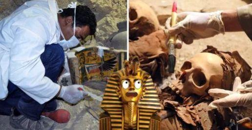(adsbygoogle = window.adsbygoogle || []).push();   Un grupo de arqueólogos han descubierto la tumba de un orfebre de la realeza al sur de El Cairo, en Egipto, y posiblemente tenga una antigüedad de tres mil 500 años.   Parece ser que no solamente los miembros directos de la realeza...