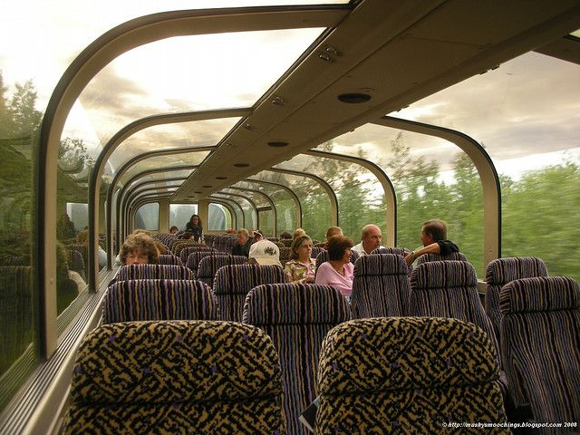 Saw Alaska in a glass top train!  Loved  the train ride from Fairbanks to Denali to Anchorage.  Amazing views every direction.