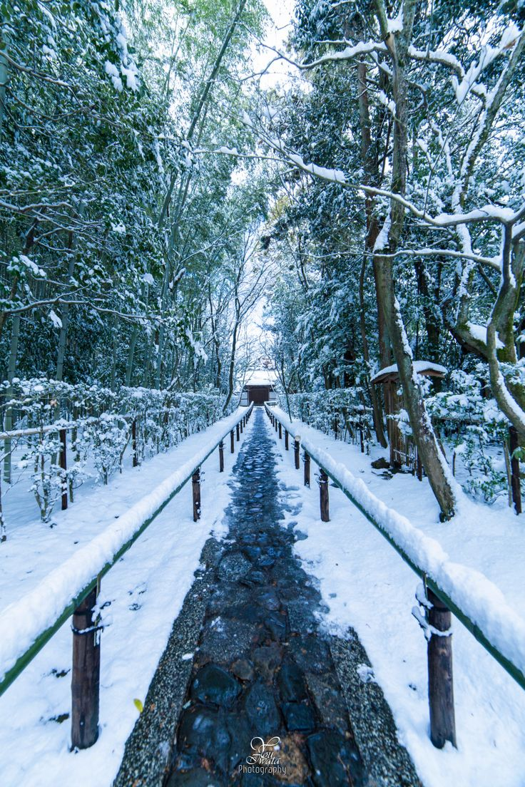 Snow in Koto-in, sub-temple of Daitoku-ji, Kyoto, Japan