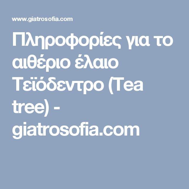 Πληροφορίες για το αιθέριο έλαιο Τεϊόδεντρο (Tea tree) - giatrosofia.com