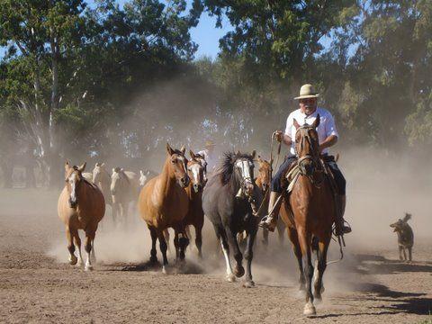 Estancia Santa Susana fiesta gaucha ranch culture & history