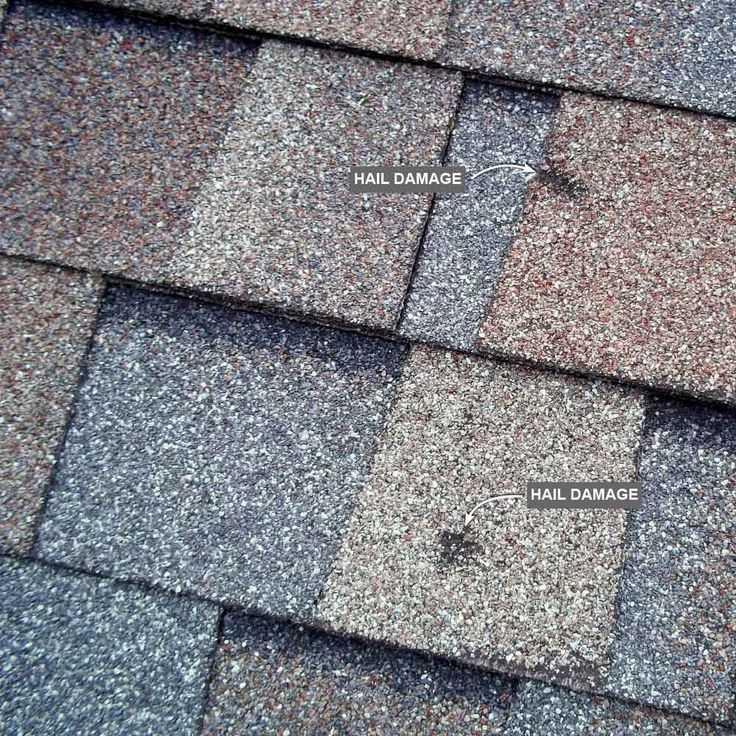 how to clean an asphalt shingle roof