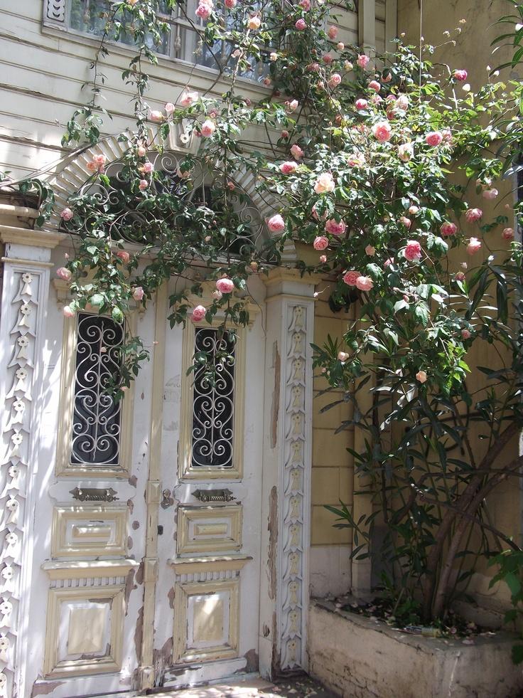 lovely door with pink roses. Kadıkoy /Istanbul