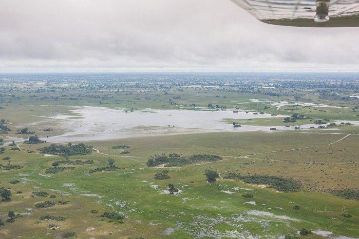 Water everywhere! Okavango Delta after Tropical Storm Dineo #Botswana #safari #bushflying