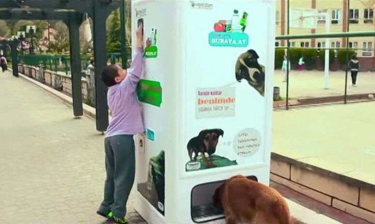 This machine gives stray dogs food in exchange for plastic bottles...RESPECT