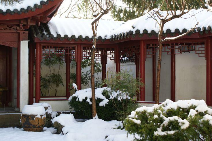 Chinese tuin in de Hortus