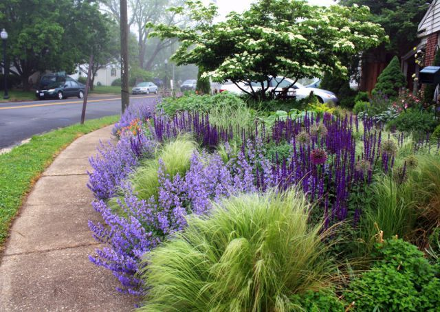 Landscape architect Thomas Rainer's garden fronts on a busy suburban street -- so he works with every inch of it!