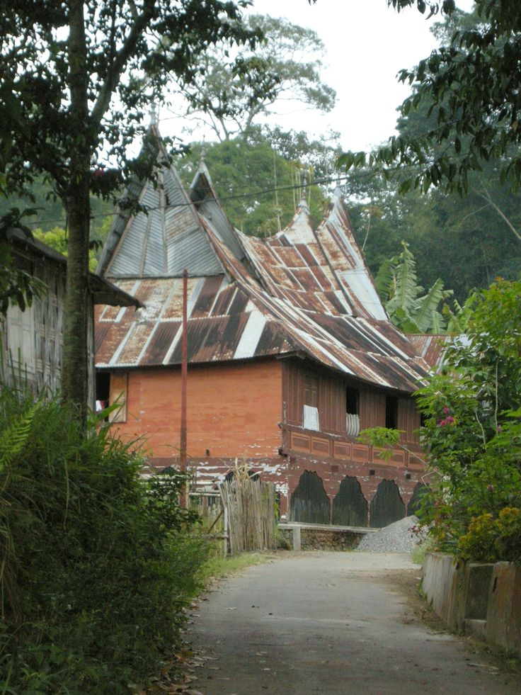 traditional house - near Bukittinggi, Sumatra, Indonesia - by selmadisini 2008