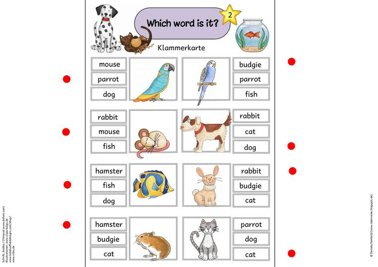 38 best Englisch Lotti images on Pinterest | Easter, Learning and Pdf