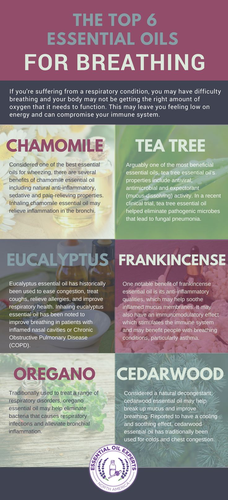 Breathe Easy Essential Oil – Top 6 Essential Oils for Breathing Problems