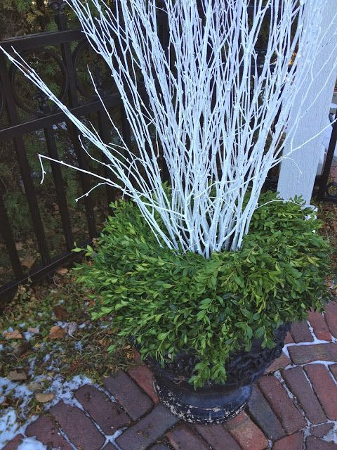 Outdoor urn winter arrangement - 2 boxwood wreaths (1 lg, 1 sm)  & white painted birch twigs