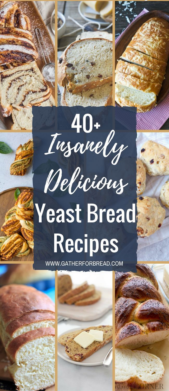 40+ Insanely Delicious Yeast Bread Recipes - Variety of bread and loaves to tantalize your taste buds. Savory knots, twists, buns and more for every baker.