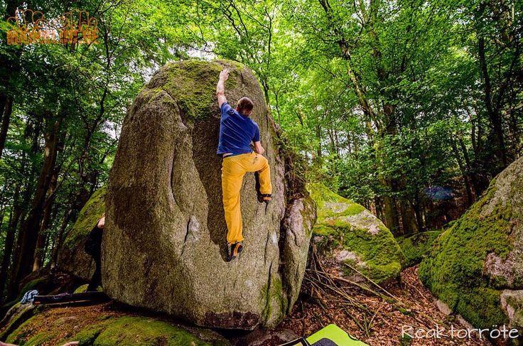 Bouldern im Odenwald  #bouldering #odenwald #fsthltn
