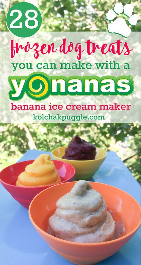 28 Frozen Dog Treats You Can Make with a Yonanas Machine from Kol's Notes