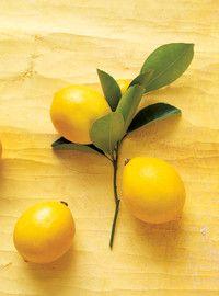 Trempette pour fruits au fromage à la crème citronné