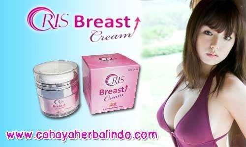 Cara mengencangkan payudara – Payudara merupakan bagian tubuh wanita yang dapat menjadi daya tarik...
