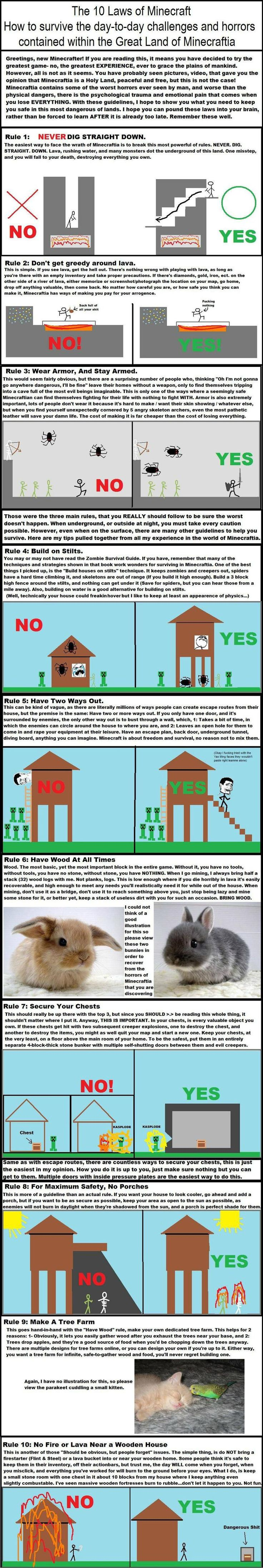 10 Laws of Minecraft. Pinning because I've yelled all of these at someone at one point or another. And had them yelled at me. (I built my house in a cave the first time I played. I remember it with shame.)