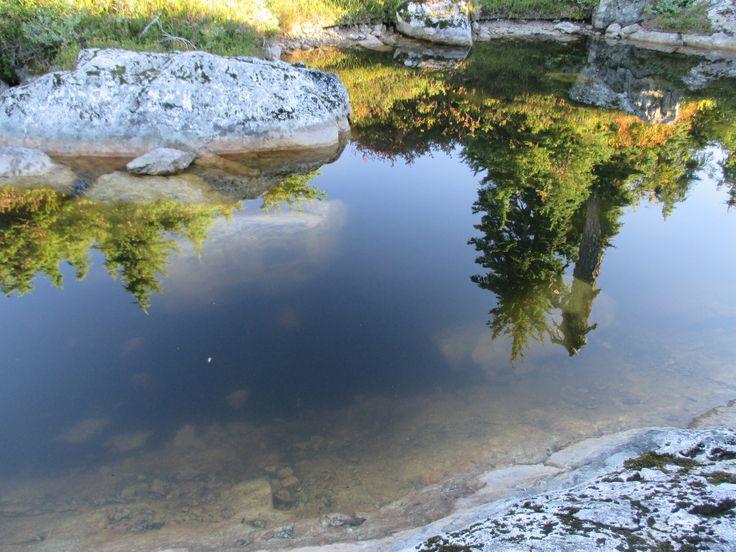 Thunderbird Ridge, Grouse Mountain, North Vancouver, BC, Canada, Fall, Hike