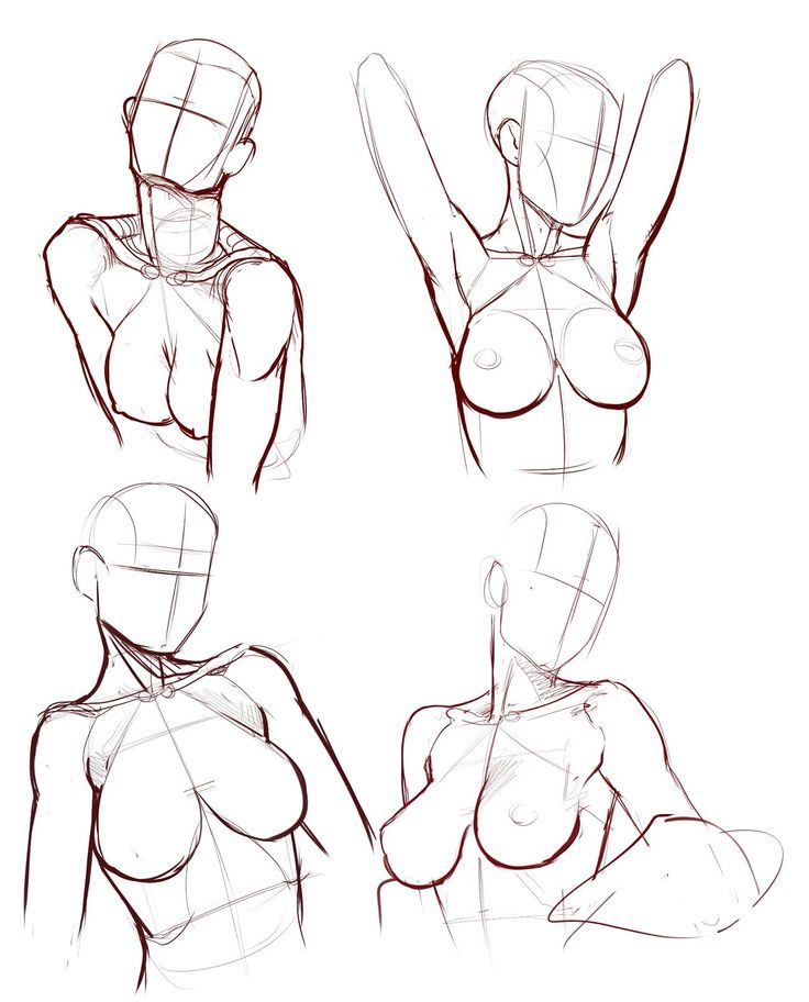 body ✤ || CHARACTER DESIGN REFERENCES | キャラクターデザイン • Find more at https://www.facebook.com/CharacterDesignReferences if you're looking for: #lineart #art #character #design #illustration #expressions #best #animation #drawing #reference #anatomy #traditional #sketch #artist #pose #gestures #how #to #tutorial #comics #conceptart #modelsheet #torso #chest #breast #boobs || ✤