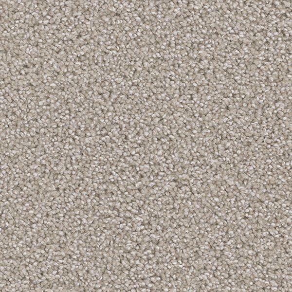 Exceptional Ii Dreamweaver Carpet Save 30 50 Carpet Installation Diy Carpet Carpet Flooring