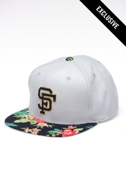 1000 Images About Mlb San Francisco Giants On Pinterest