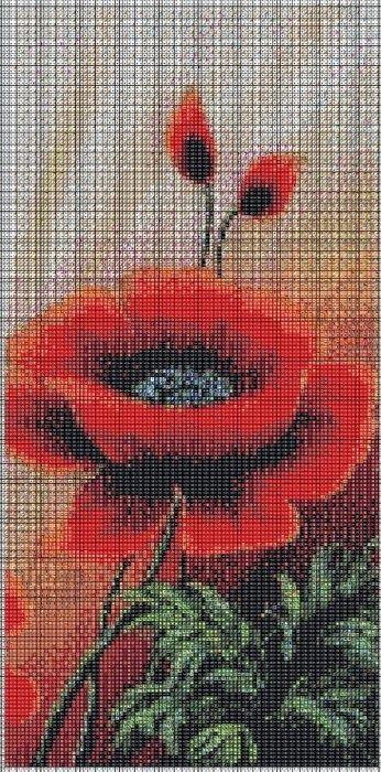 8.jpg 346×700 pixel