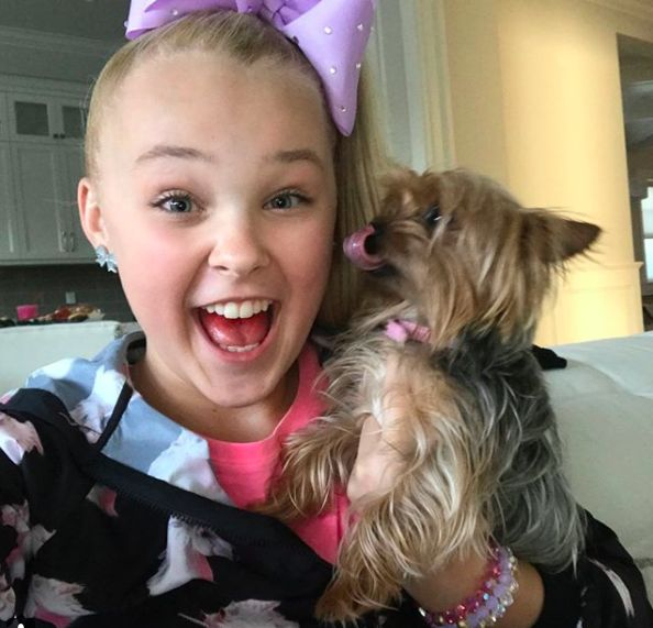 Nunudes Co Uk Jojo: Jojo Siwa's Dog BowBow: Name, Facts, And More About The