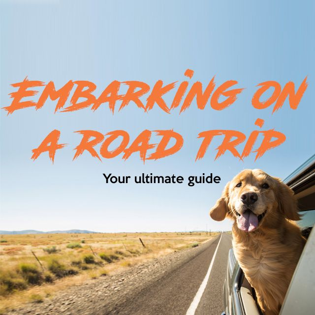 Embarking on a road trip