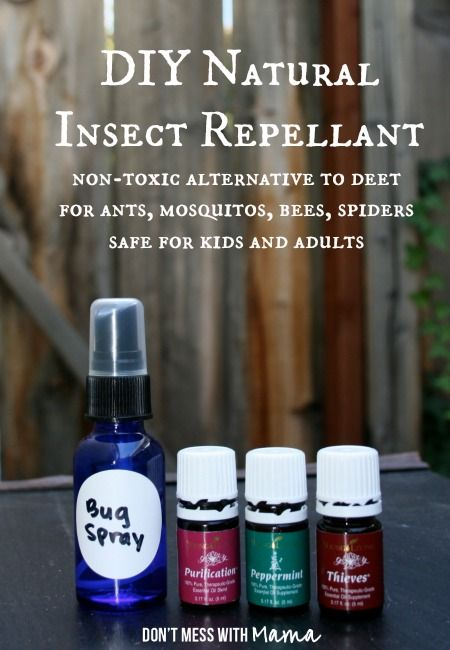 DIY Natural Insect Repellant - Non-Toxic Alternative to DEET Bug Spray - #essentialoils #pestcontrol #naturalremedies - DontMesswithMama.com