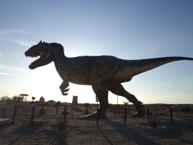 Ruta del Dinosaurio  por la Flor en la Arena. Pica. Chile