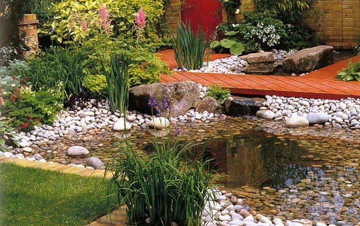 78 images about bog garden on pinterest gardens for Backyard pond animals