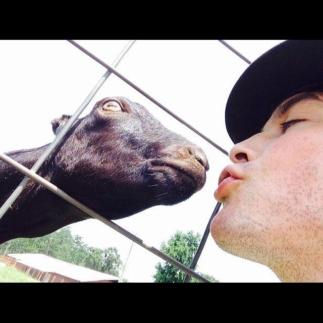 Ian Somerhalder - 02/08/14 - Farm love... Make out session on @heiferinternational Ranch in Arkansas right now http://instagram.com/p/rNOrZmqJz_/?modal=true - Twitter / Instagram Pictures