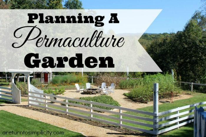 Interested in permaculture, but not sure where to start? Here are some steps to planning a permaculture garden this year.