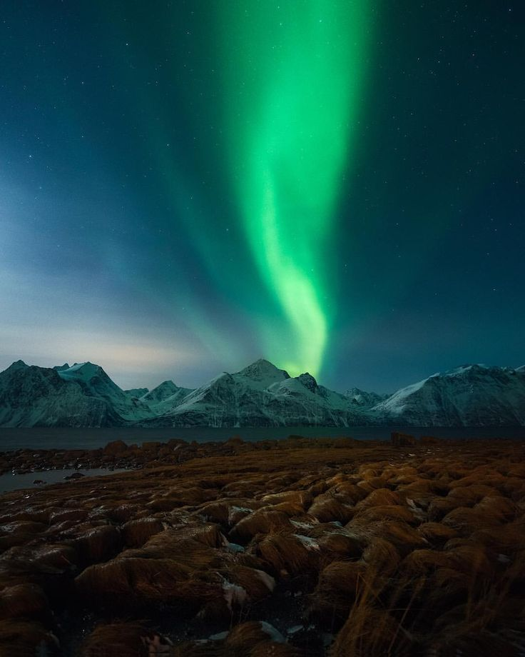 "4,174 Likes, 71 Comments - Northern Lights & Landscapes (@torivarnaess) on Instagram: ""Northern lights above the Lyngen Alps. And yes, that are the famous Trump wigs 😅 #nordicphototours…"""