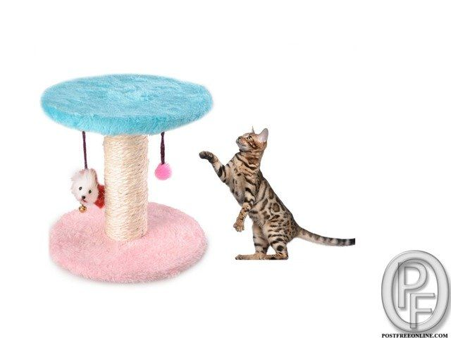 Cat Playing Toys Spring Seat Cat Scratch Board With Mouse in Mumbai, Maharashtra, India in Pet Animals and Accessories category under budget INR ₹
